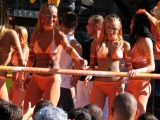 Thumb for Budapest Parade - Public Party Flashing